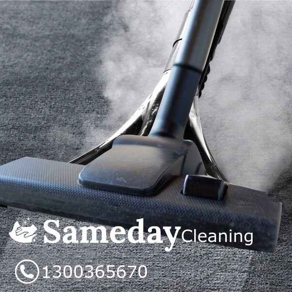 Carpet Steam Cleaning Stain Removal Caringbah