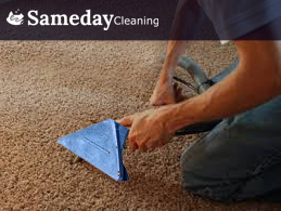 Carpet Clean By Experts At Caringbah