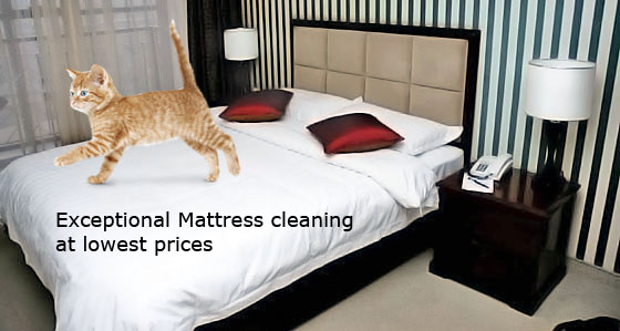 Mattress Cleaning North Richmond
