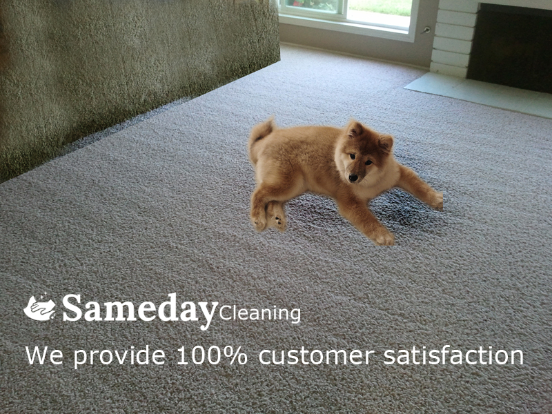 Same Day Cleaning Service At Caringbah
