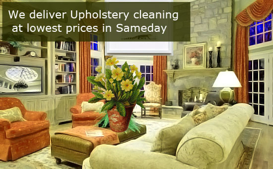 Upholstery Cleaning and Protection Minto