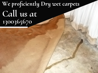 Carpet Flood Water Damage Dangar