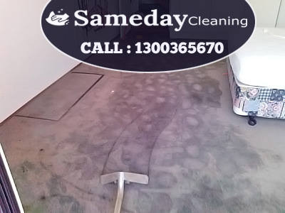 Carpet Flood Damage Services Dangar