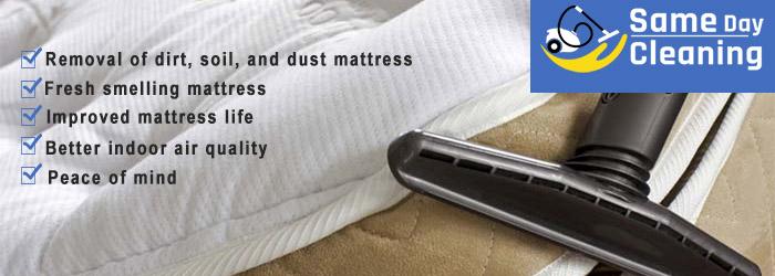 Professional Mattress Cleaning Orelia